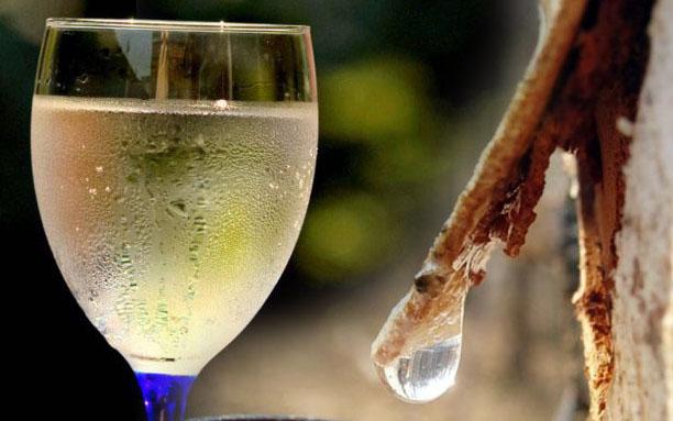 Домашнее шампанское из березового сока