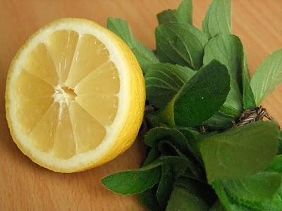 Варенье из мяты с лимоном рецепт с фото отзывы