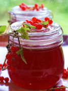 Прозрачное домашнее желе из красной смородины