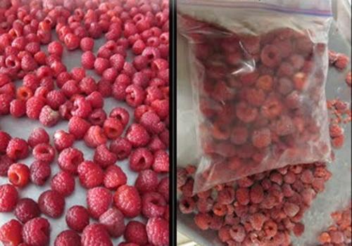 Малина свежая и ягоды малины сушеные