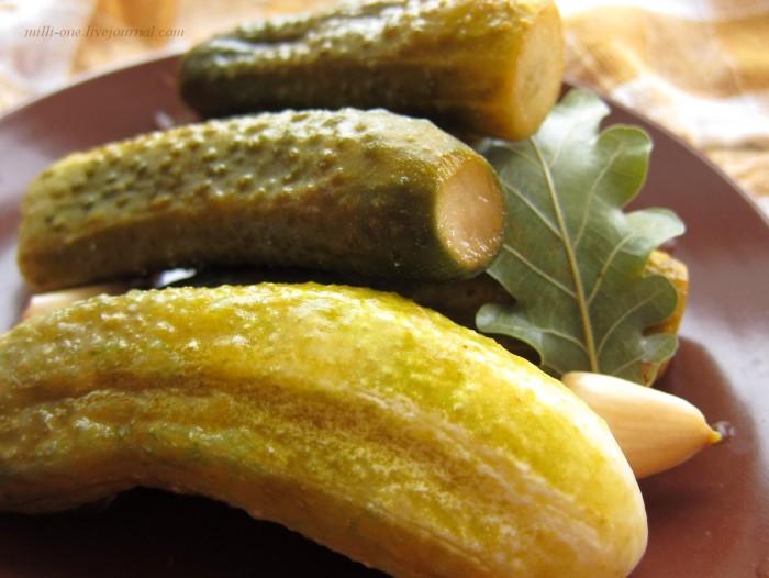 Малосольные огурцы быстрого приготовления с листьями дуба.