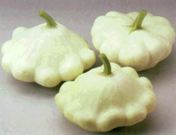 Паттинсон рецепты заготовок