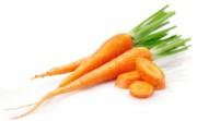 Польза моркови и вред для организма человека