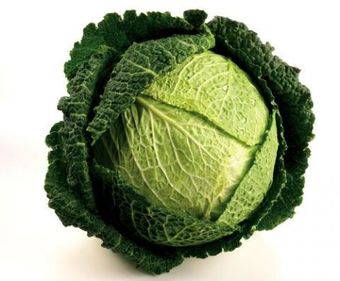 В чем польза савойской капусты?