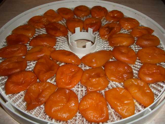 Подвяленные абрикосы