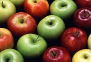 В чем польза яблок и есть ли вред для здоровья