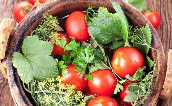 Как солить помидоры рецепт