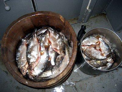 Как сделать для засолки рыбы