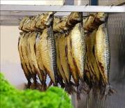 Полугорячее копчение рыбы своими руками.