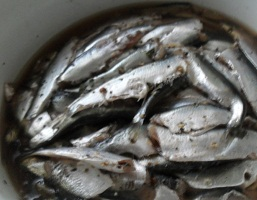Как солить мелкую рыбу для сушки в домашних условиях 82