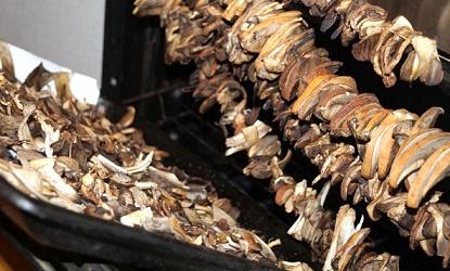 сушка грибов в электросушилке температура и время