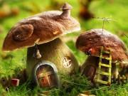 Способы заготовки грибов на зиму