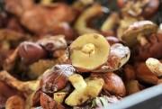 Подготовка грибов к засолке: как правильно чистить и мыть грибы перед солением.