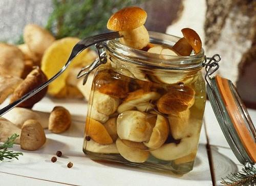 грибы в аджике рецепт