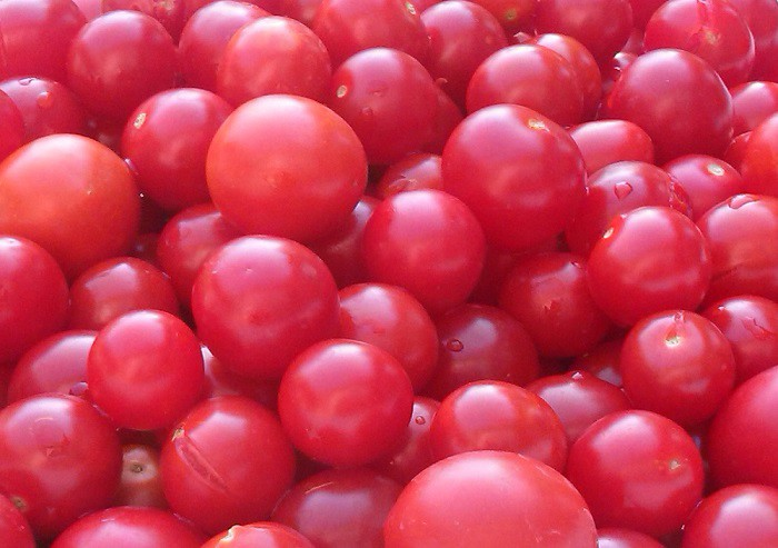 Спелые свежие томаты