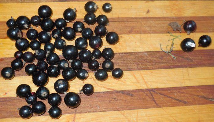 Черная смородина перетертая с сахаром на зиму или сырое варенье из черной смородины - рецепт с фото