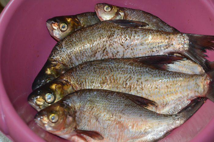 рыбные котлеты из подлещиков рецепт