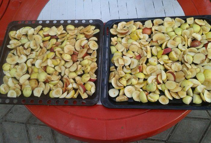 Как сушить яблоки в домашних условиях: пошаговая инструкция