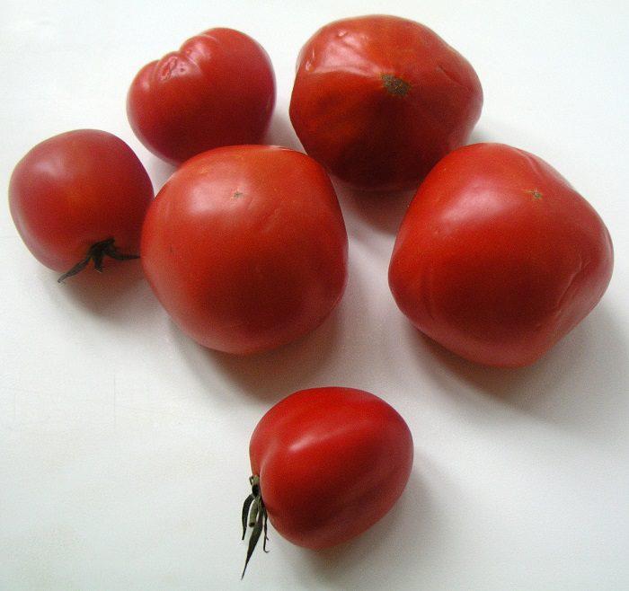 Зажарка из помидор замороженная порционно - как приготовить зажарку из помидоров на зиму, рецепт с фото