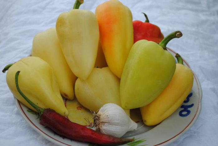 ингредиенты для заготовки из перца