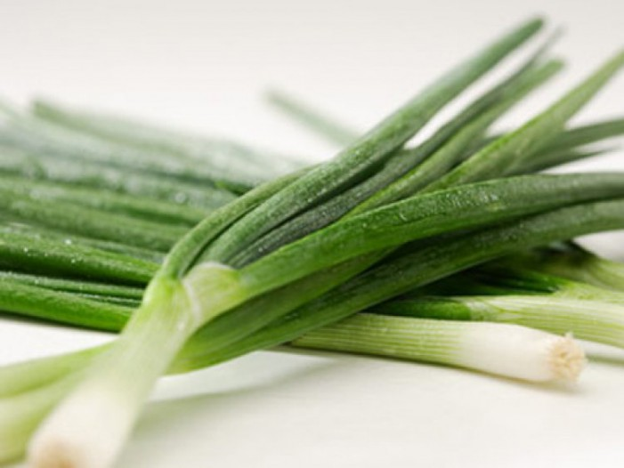 Как можно заморозить лук на зиму в морозилке: заморозка зеленого и репчатого лука - Сусеки