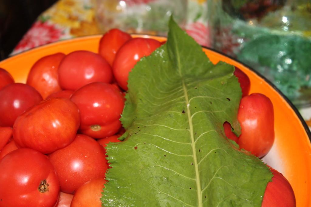 помидоры и лист хрена