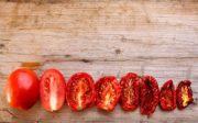 сушка помидоров в электросушилке