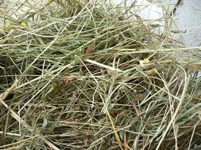 Как сушить сено