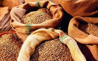Как сушить зерно