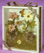 сушение гербария