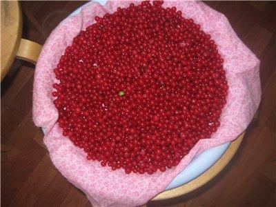 ягоды после промывки