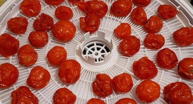 цукаты из помидоров