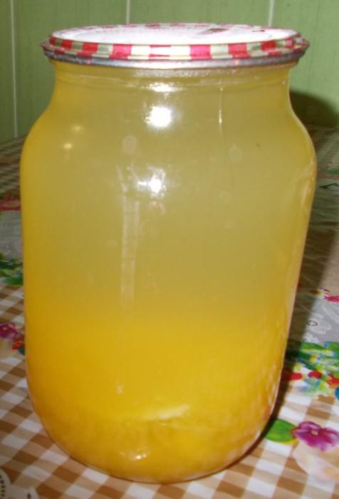 Как в домашних условиях приготовить тыквенный сок из соковыжималки 316