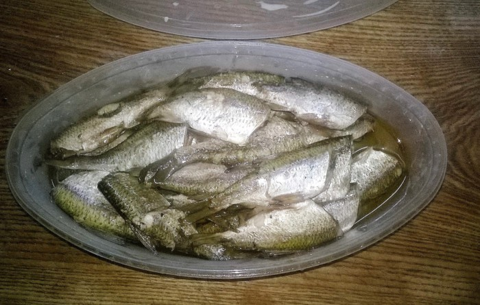 Как солить мелкую рыбу для сушки в домашних условиях 99