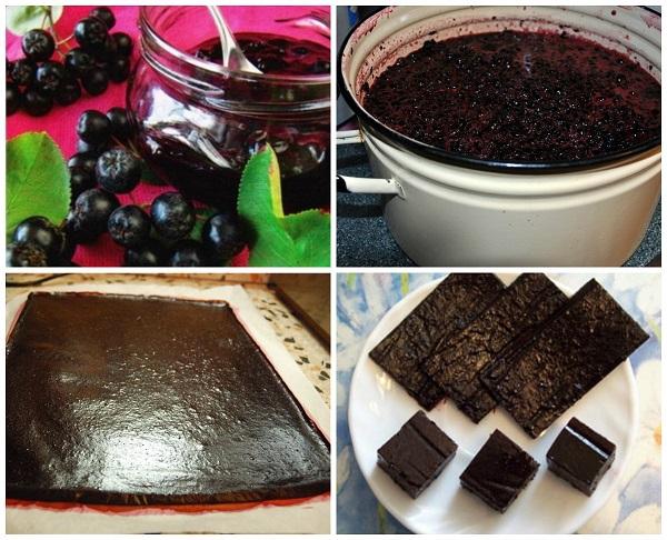 Что приготовить из рябины черноплодной в домашних условиях