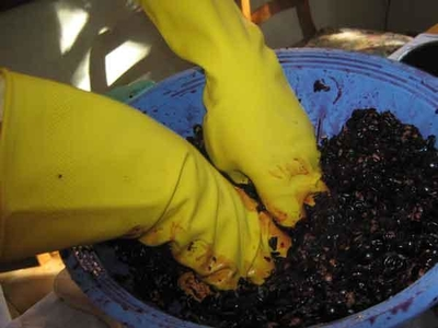 мармелад из винограда