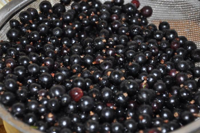 Варенье из черной смородины и малины без варки