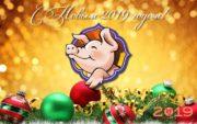 Новогодние открытки со свинками и поросятами - смешные и милые